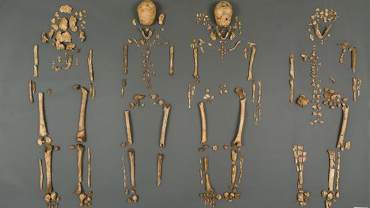 Identificados los cuerpos de los líderes desaparecidos de Jamestown