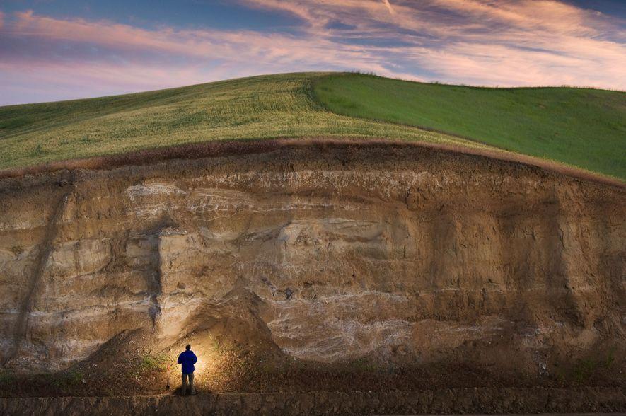 John Reganold, de la Universidad del Estado de Washington, examina las capas expuestas de suelo antiguo …