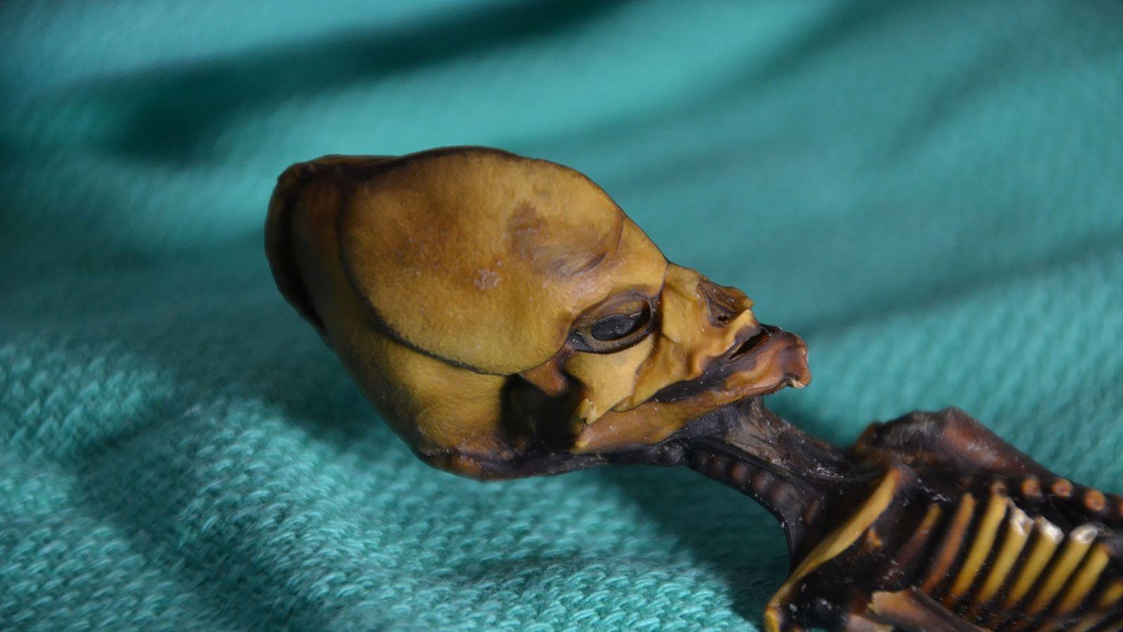 Momia de Ata