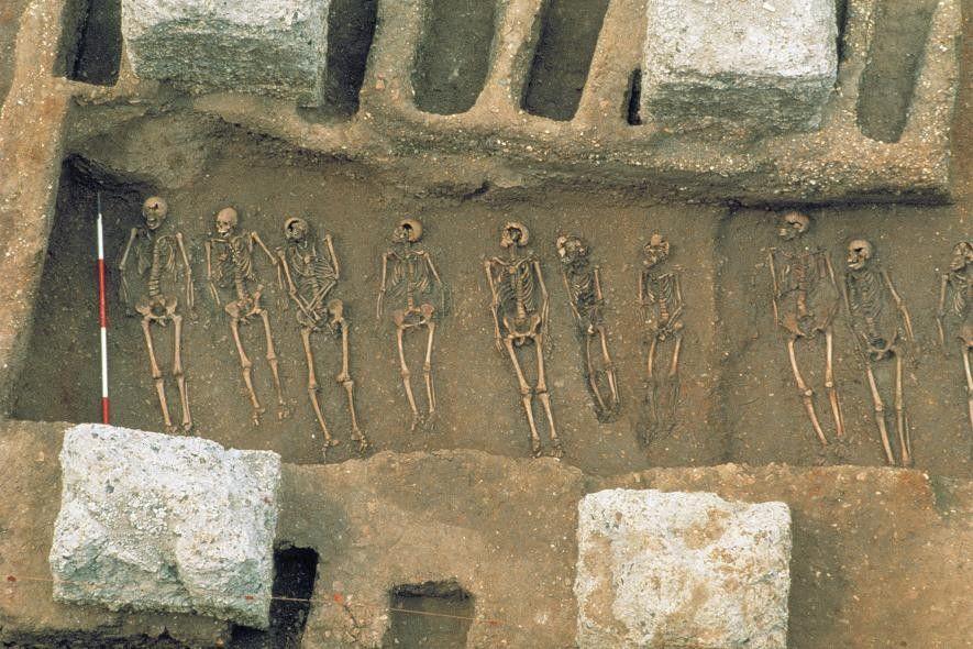 En 1986, los arqueólogos descubrieron una fosa común en East Smithfield, Londres, que se usó para ...