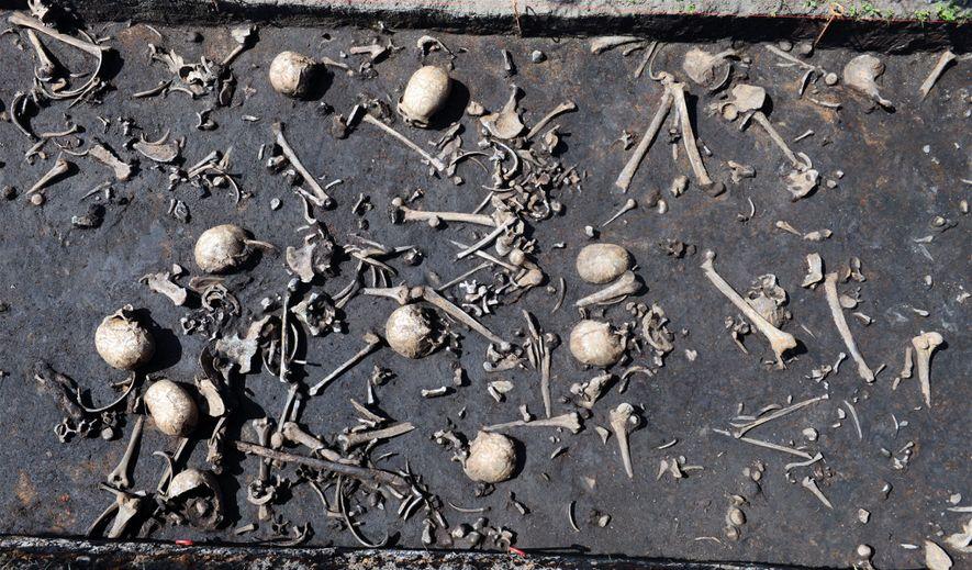Los restos de las víctimas de la batalla de la Edad del Bronce en Tollense.