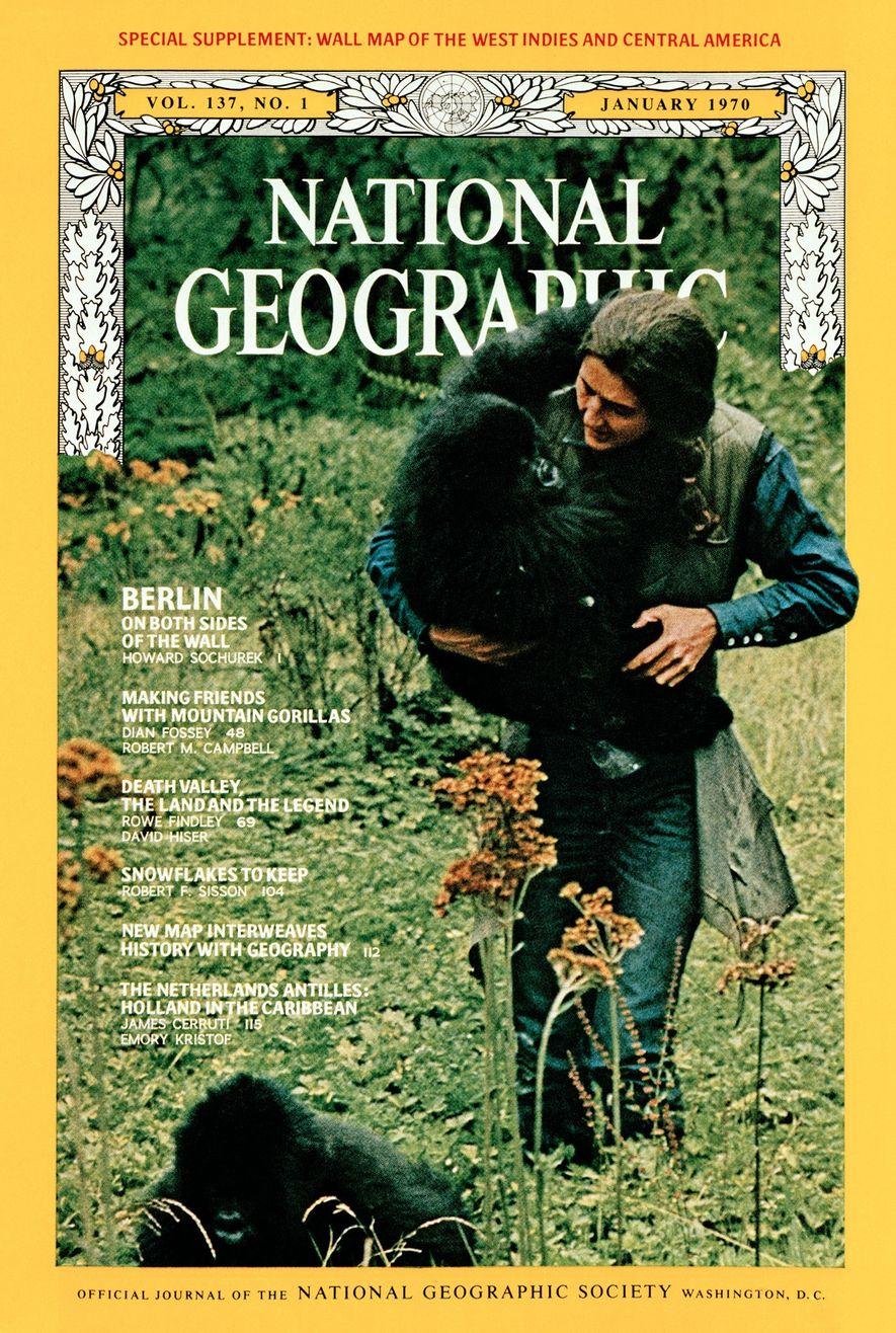 El primer relato en primera persona de la propia Fossey sobre la vida entre gorilas de ...