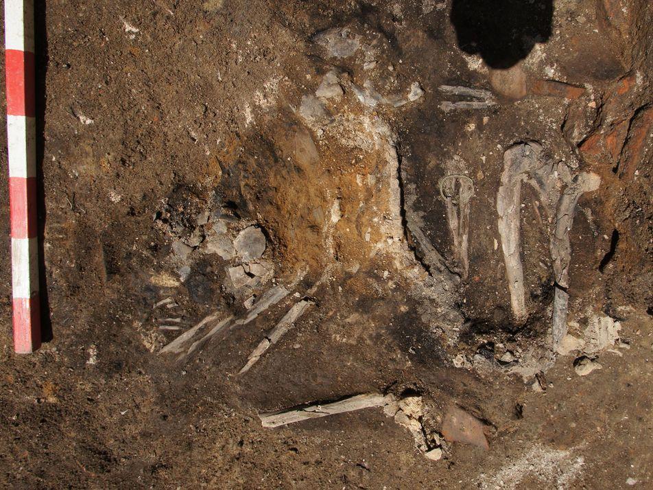 Estos esqueletos quemados son restos de una antigua invasión goda