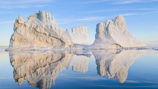 La fauna y los paisajes del Ártico