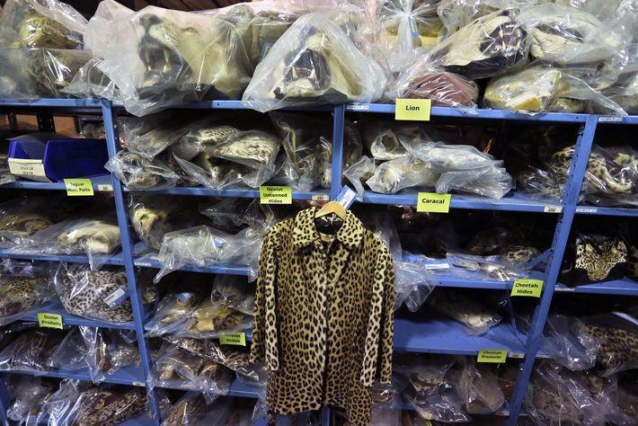 Chaqueta de piel de leopardo