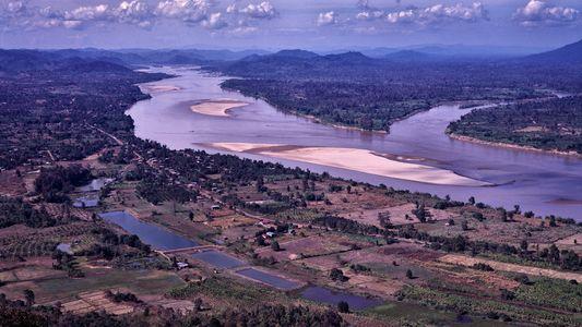 El caudal del Mekong es el más bajo en 100 años y el suministro de alimentos ...