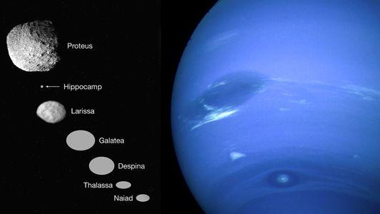 Descubren una nueva luna de Neptuno: Hipocampo