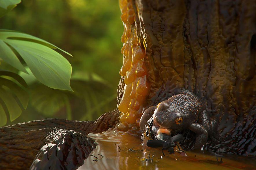 Una ilustración muestra cómo podría haberse quedado atrapada en resina de árbol la rana primitiva para …