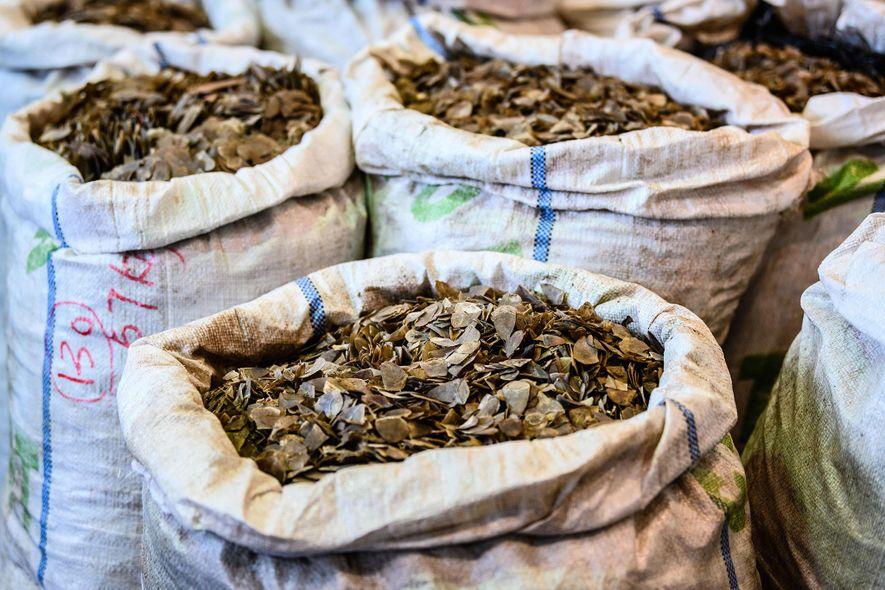 En febrero, los agentes de aduanas de Hong Kong incautaron ocho toneladas de escamas de pangolín en Nigeria, poniendo de relieve la enorme escala del comercio ilegal.