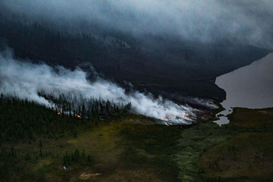 Los incendios forestales arden cerca de la transición tundra-taiga de Siberia. Se prevé que dichos incendios ...