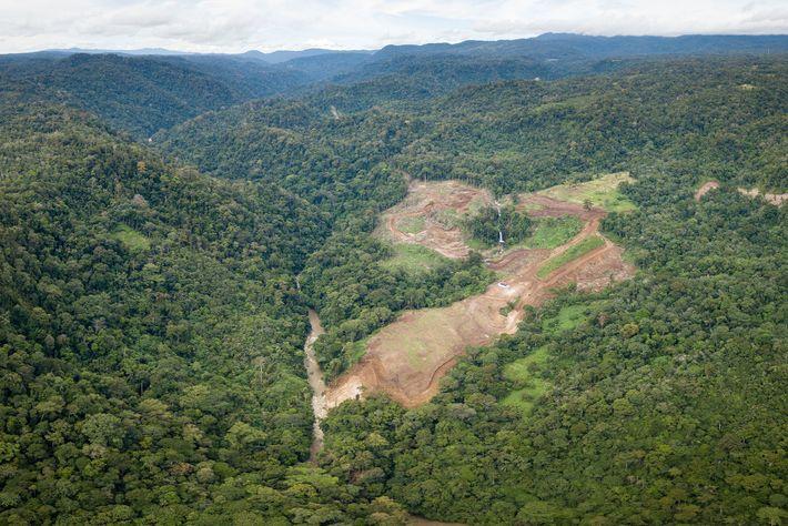 Batang Toru, Sumatra