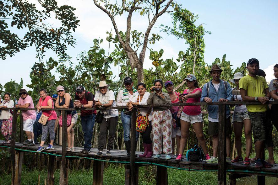 Los turistas observan el recinto de un manatí en Puerto Alegría en agosto de 2017. El manatí era uno de los 22 animales rescatados por las autoridades medioambientales en diciembre. Actualmente, se recupera en un centro de rehabilitación.