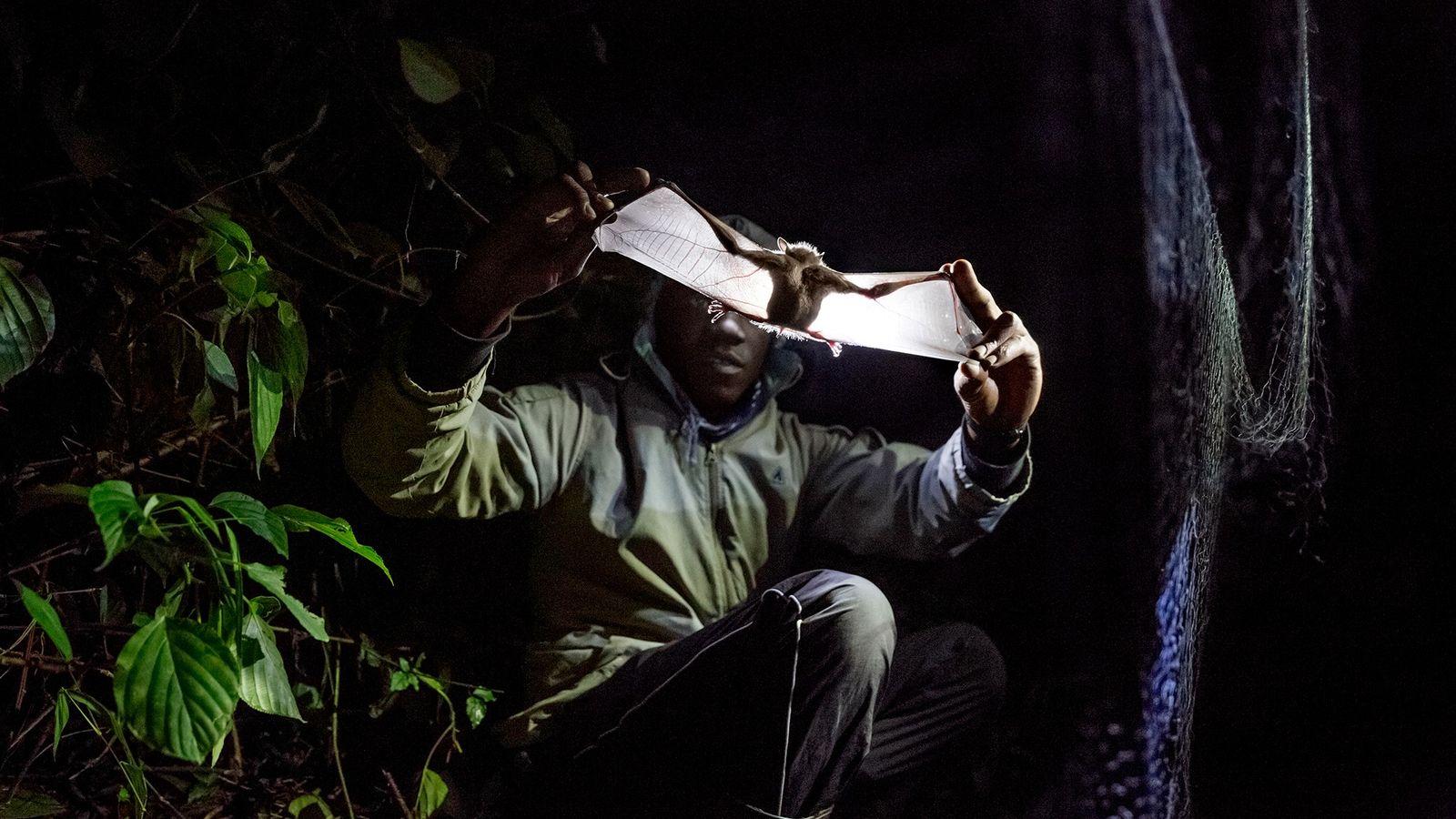 Investigador en Uganda