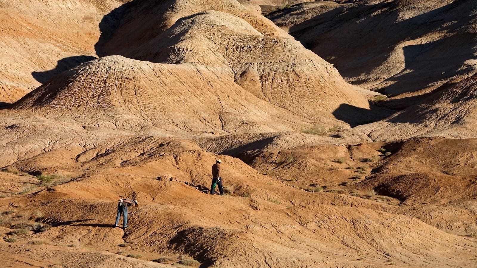 Cuenca de Junggar
