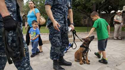 El adiestramiento de perros militares en Estados Unidos