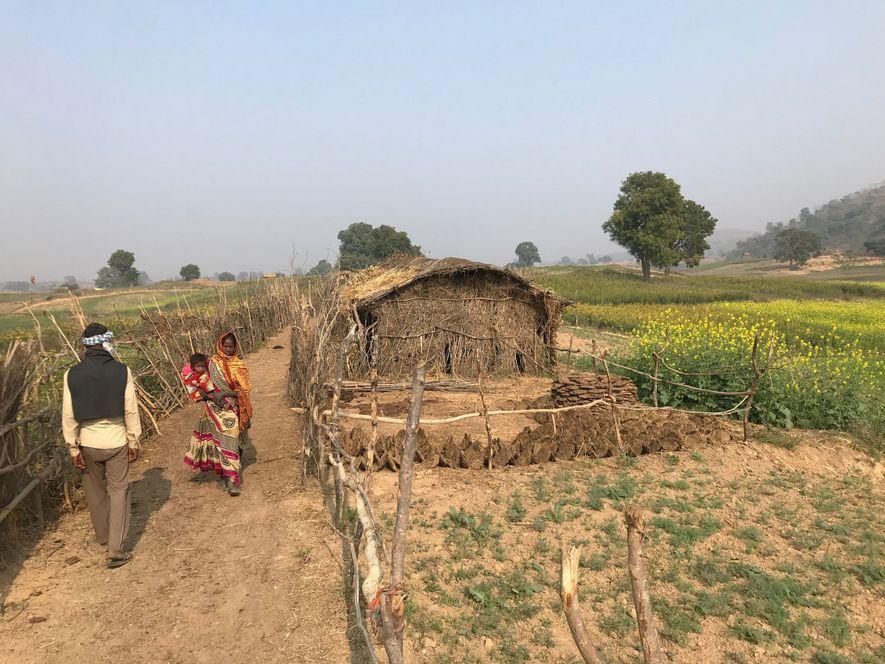 Los adivasi de Uttar Pradesh, como algunos de los 100 millones de personas indígenas de la India, son portadores de marcadores genéticos que datan de la colonización de Asia de la Edad de Piedra.