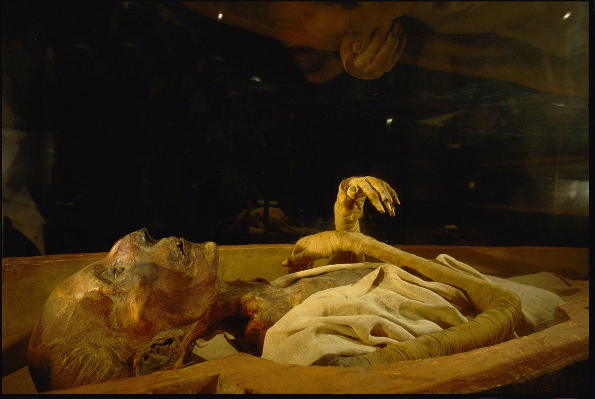 Momia de Ramsés II