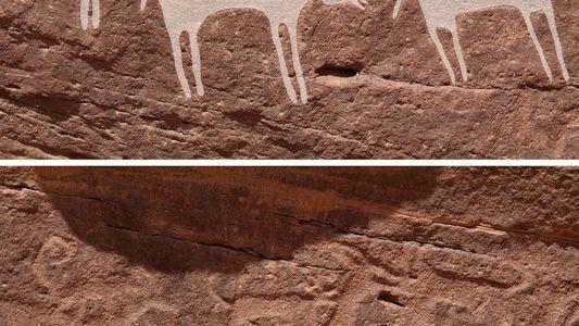 Estos podrían ser los grabados más antiguos que representan a perros