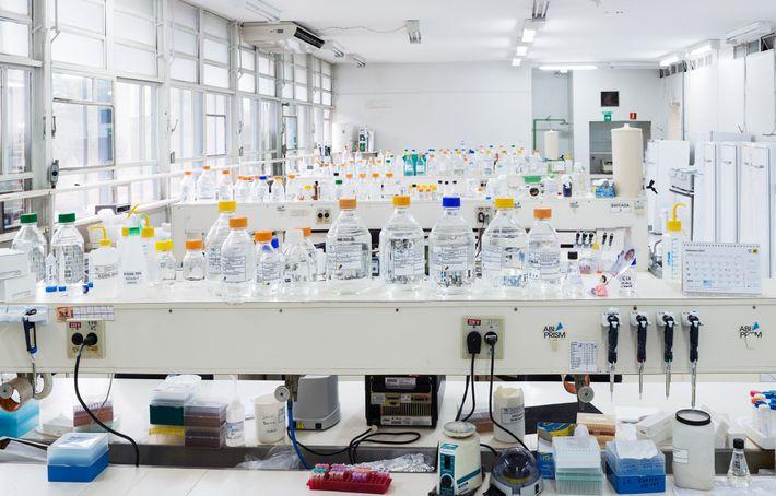 Embrapa Recursos Genéticos y Biotecnología