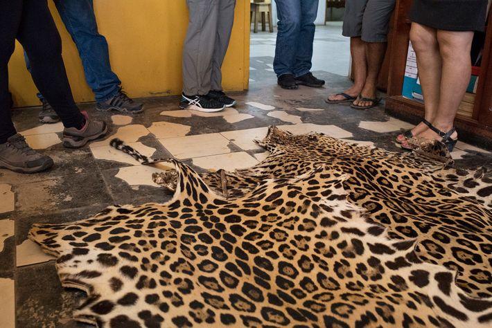 Piel de jaguar