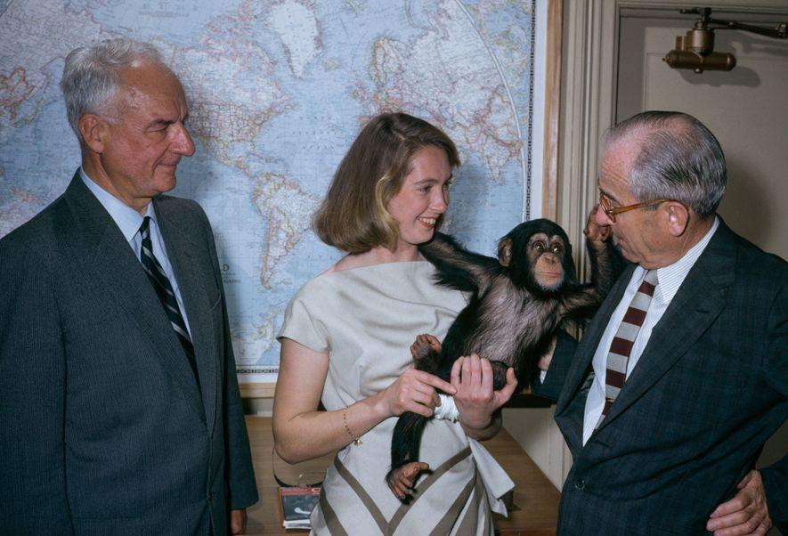 Jane Goodall sostiene un chimpancé llamado Lulu junto al personal de National Geographic.
