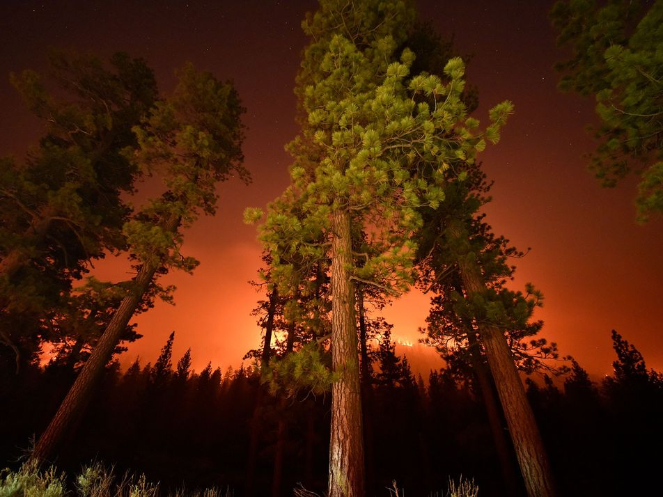 Stuart Palley nos muestra los incendios forestales en primer plano
