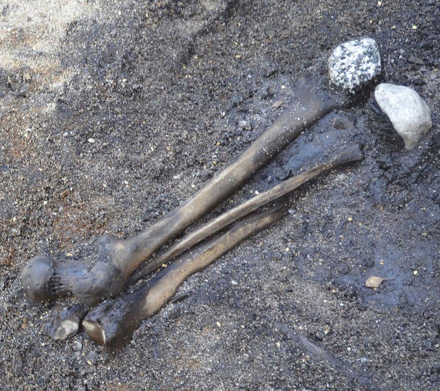 Los huesos de piernas de adultos se recuperaron del campo de batalla y se dispusieron en los humedales junto a piedras no locales.