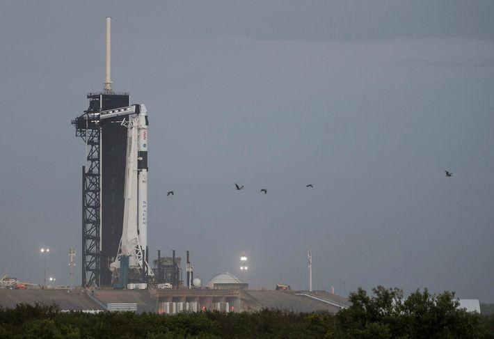 Un cohete Falcon 9 de SpaceX con la nave Crew Dragon