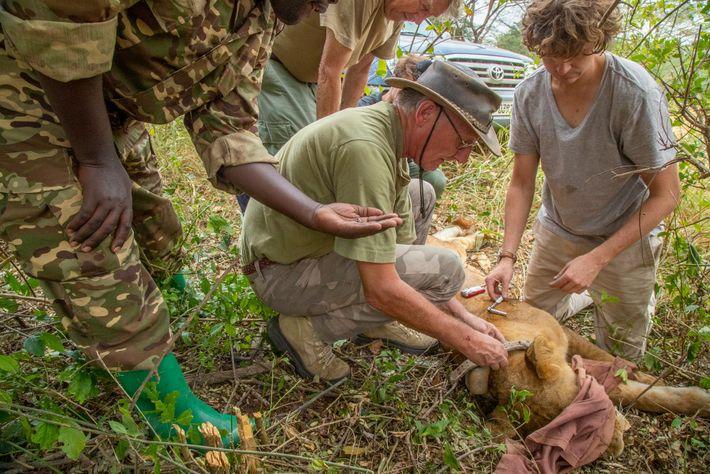 Leona, Uganda