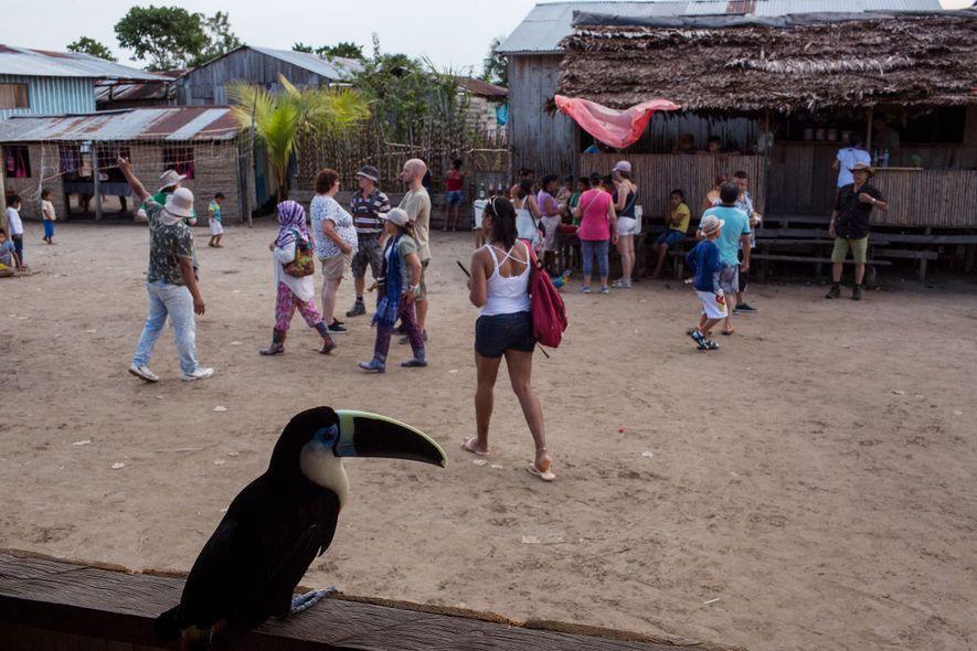Tras un tucán cautivo, los visitantes compran aperitivos y pasean por el centro de Puerto Alegría en junio de 2017. Además de las aves exóticas, los visitantes podían sostener perezosos, tortugas, anacondas y un oso hormiguero, entre otros. Todos habían sido capturados en la selva.