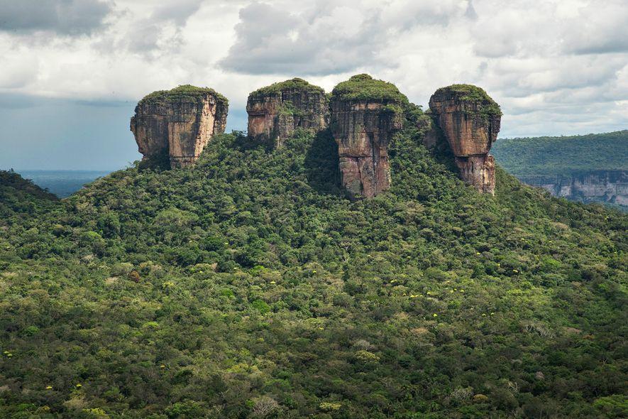Serranía de Chiribiquete, el mayor parque nacional de selva tropical protegido del mundo, ha sido expandido ...