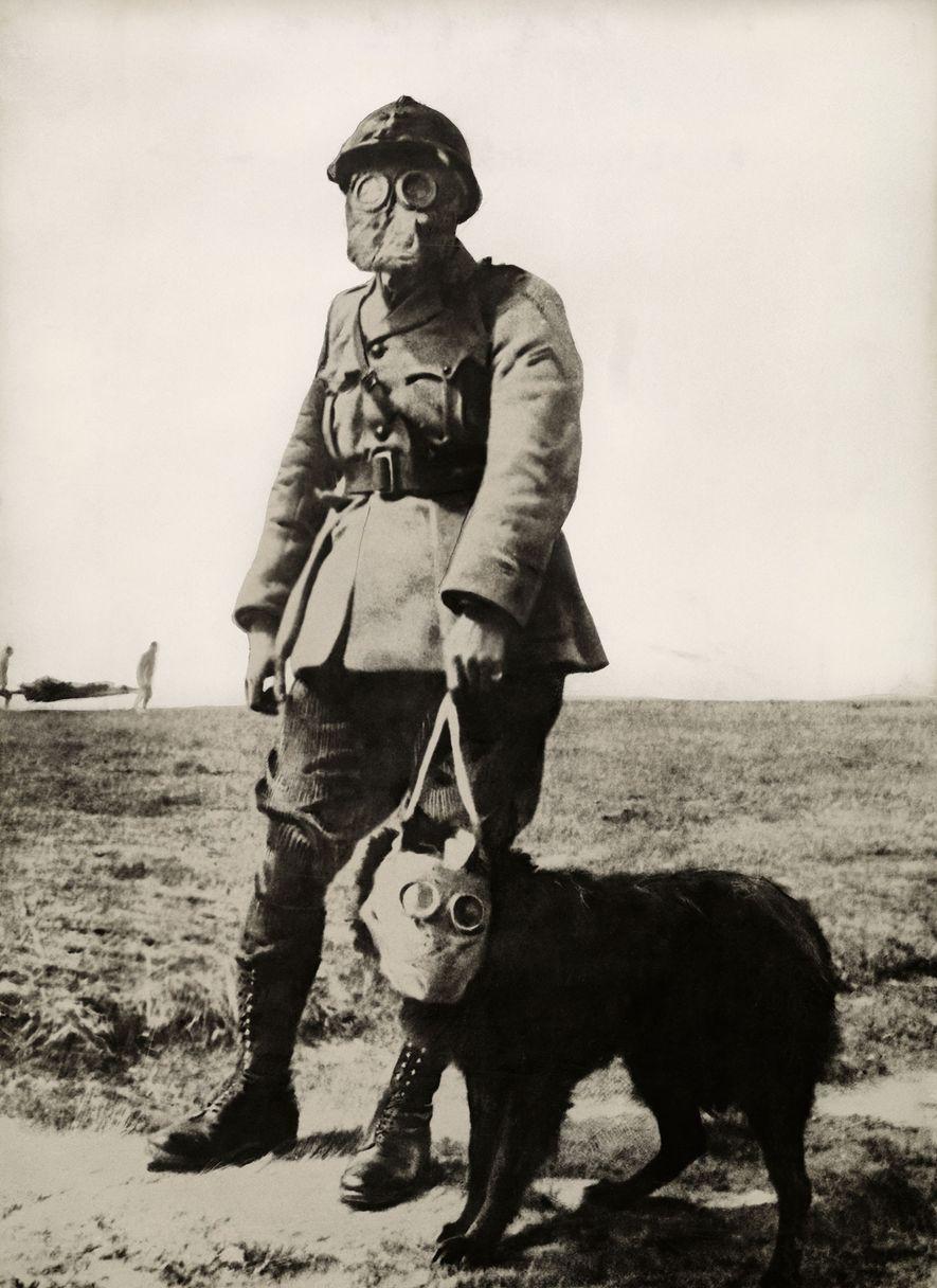 Un soldado y un perro