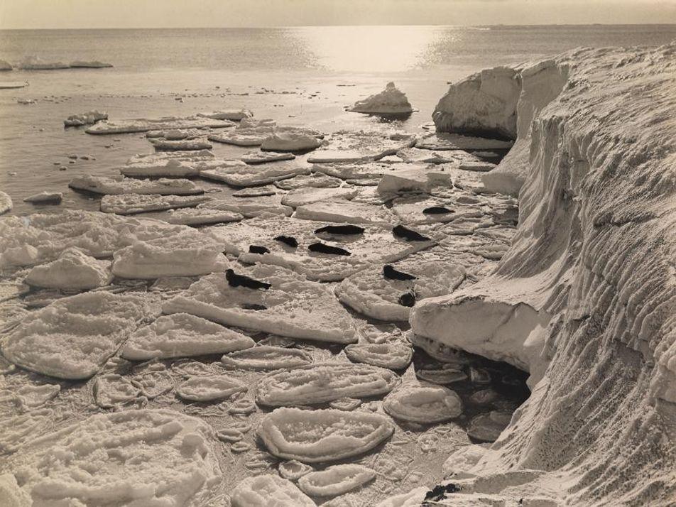 Herbert Ponting, uno de los primeros fotógrafos en la Antártida