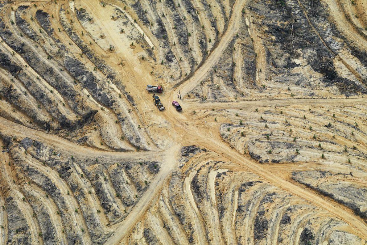 Esta imagen aérea muestra un paisaje degradado en Johor, Malasia. La deforestación tropical ocurre principalmente cuando …