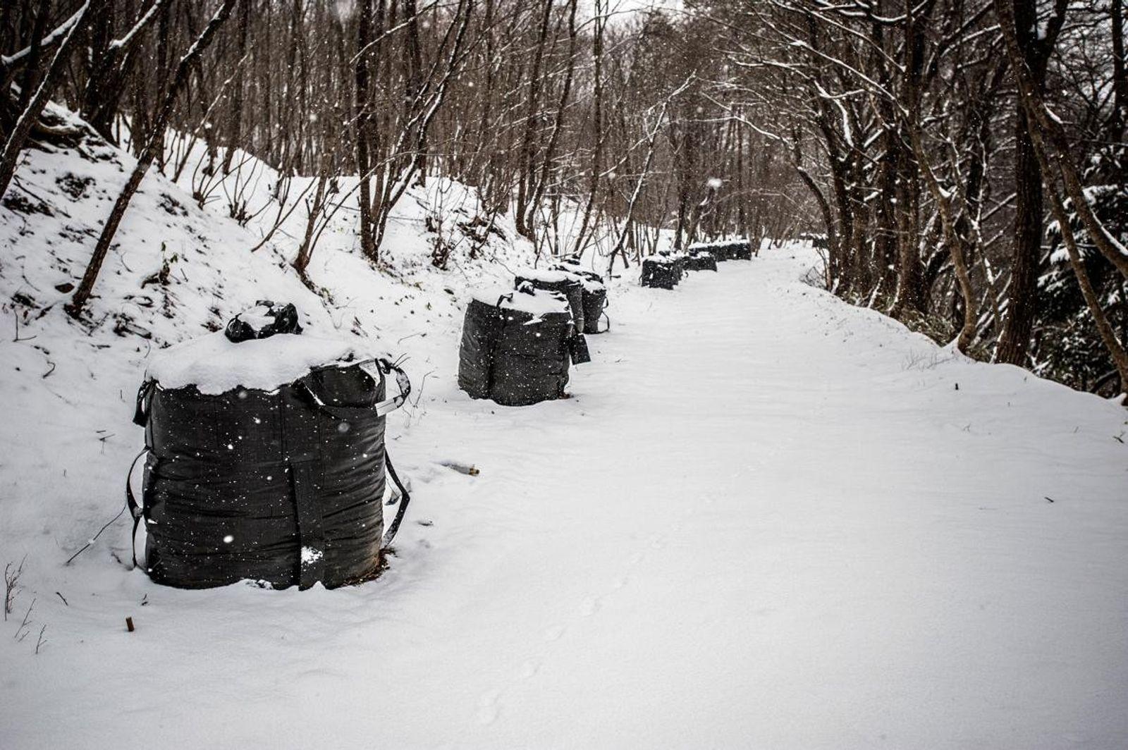 Fukushima nevada