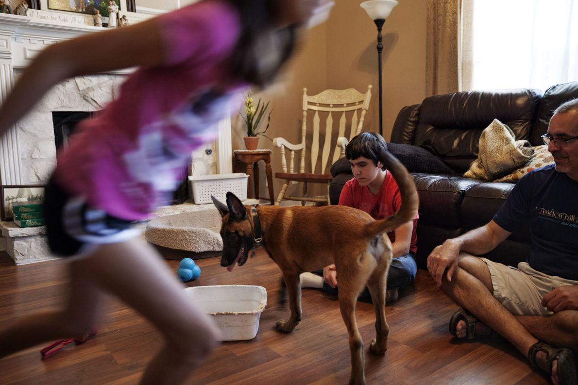 La familia Gutiérrez acoge a un joven cachorro del programa militar. Los perros nacen en la …