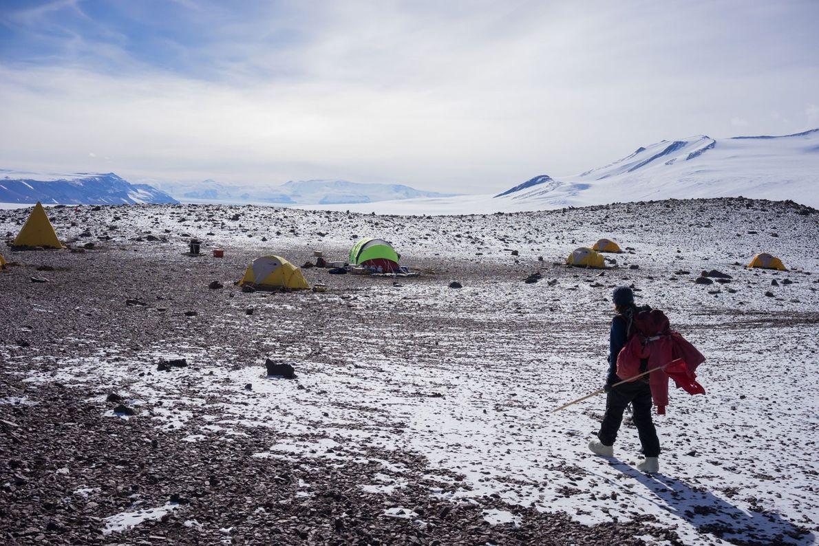 La científica Patricia Ryberg regresa al campamento del pico Graphite tras pasar el día recopilando fósiles …