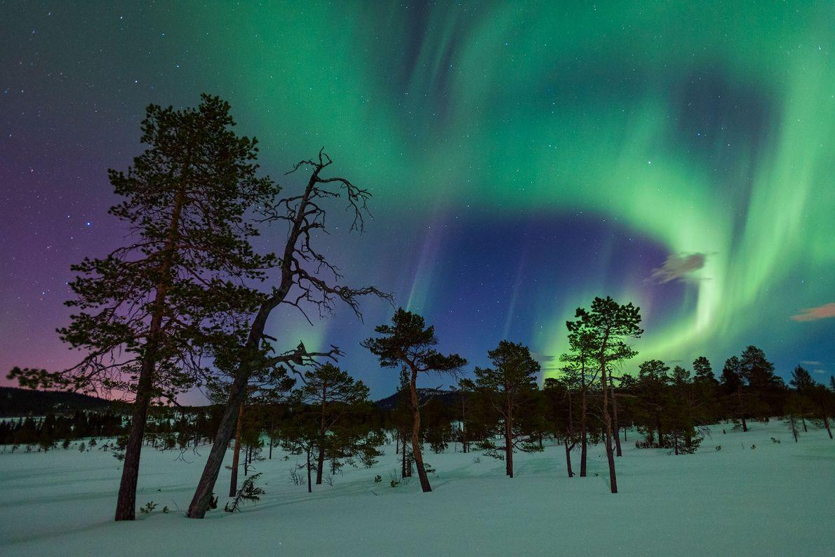 Aurora en Gjenvollhytta, Noruega