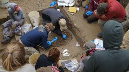 Descubierto un ancestro nativo americano perdido gracias a ADN de hace 11.500 años