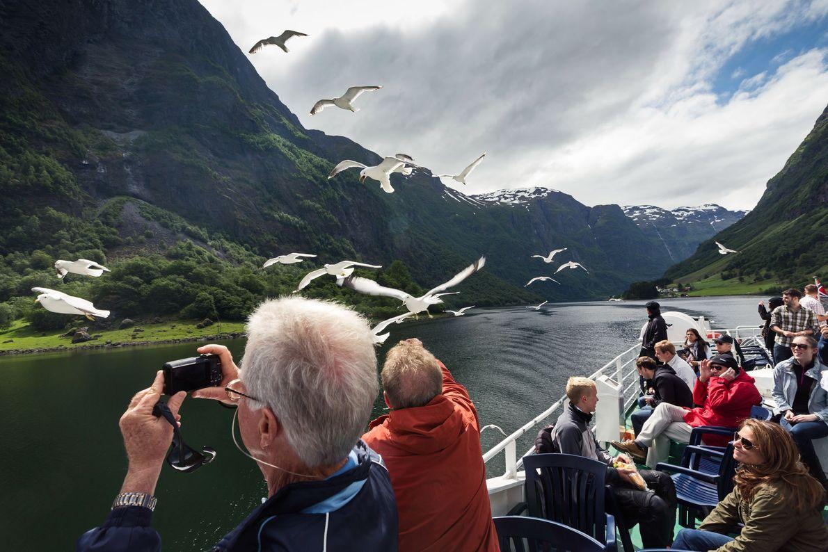 Imagen de turistas fotografiando aves cerca de los fiordos en Noruega