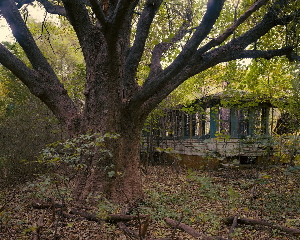 Casa del director, Isla Hart