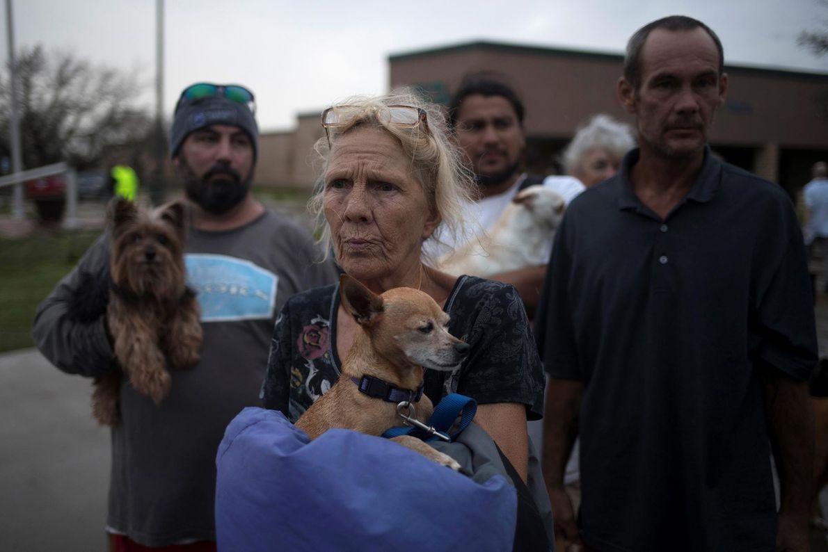 La gente sostiene a sus mascotas
