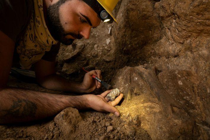 El arqueozoólogo Gabriele Russo