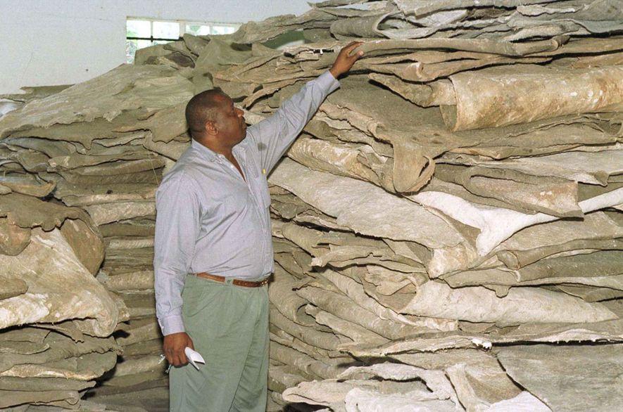 Las pieles de elefante, como estas en Zimbabue que se almacenan para subastarlas, se emplean para ...