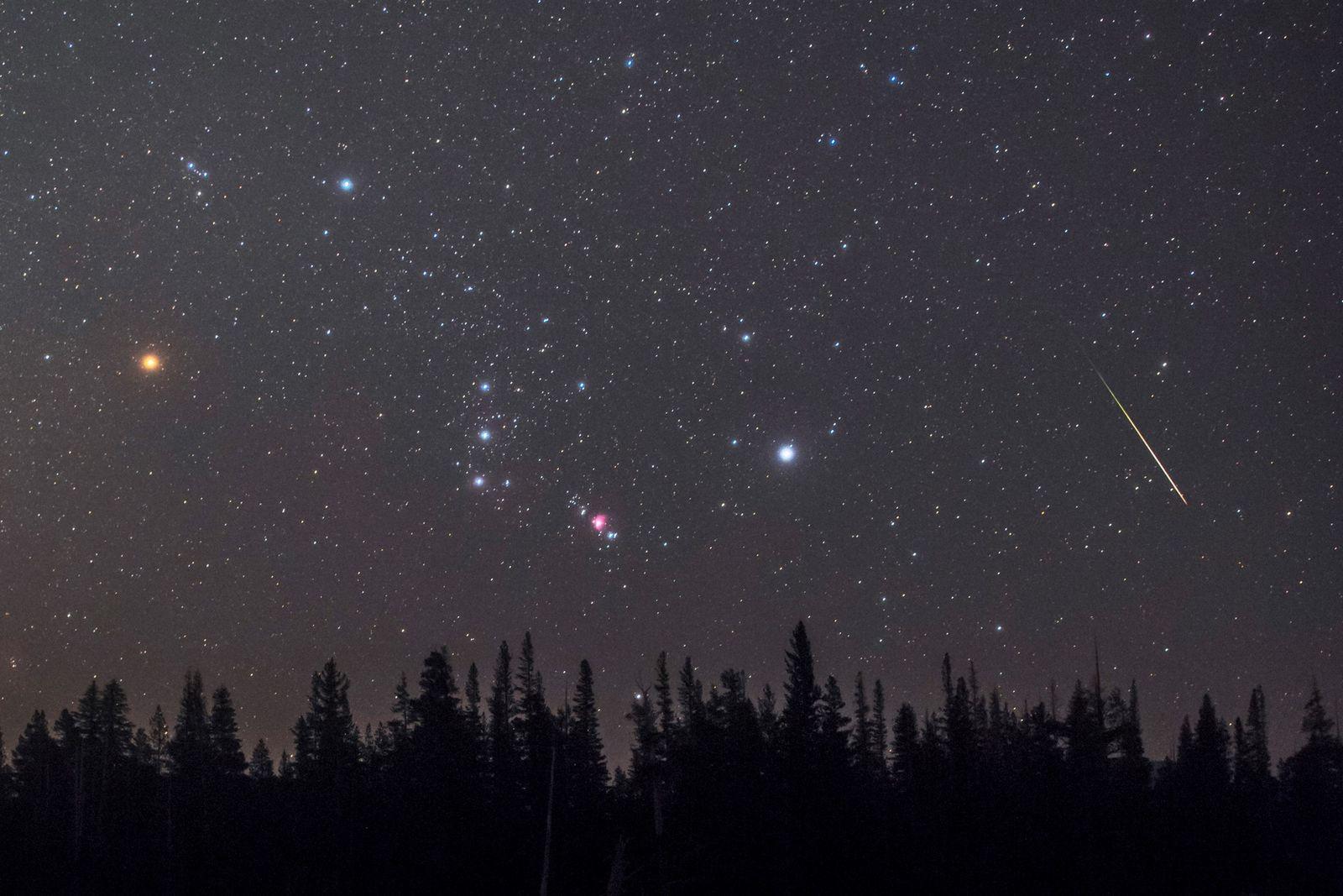 Constelación de Orión