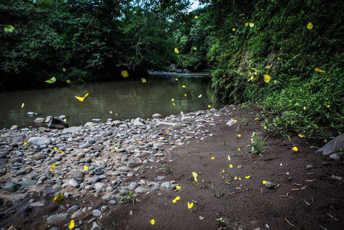 El río Pampe