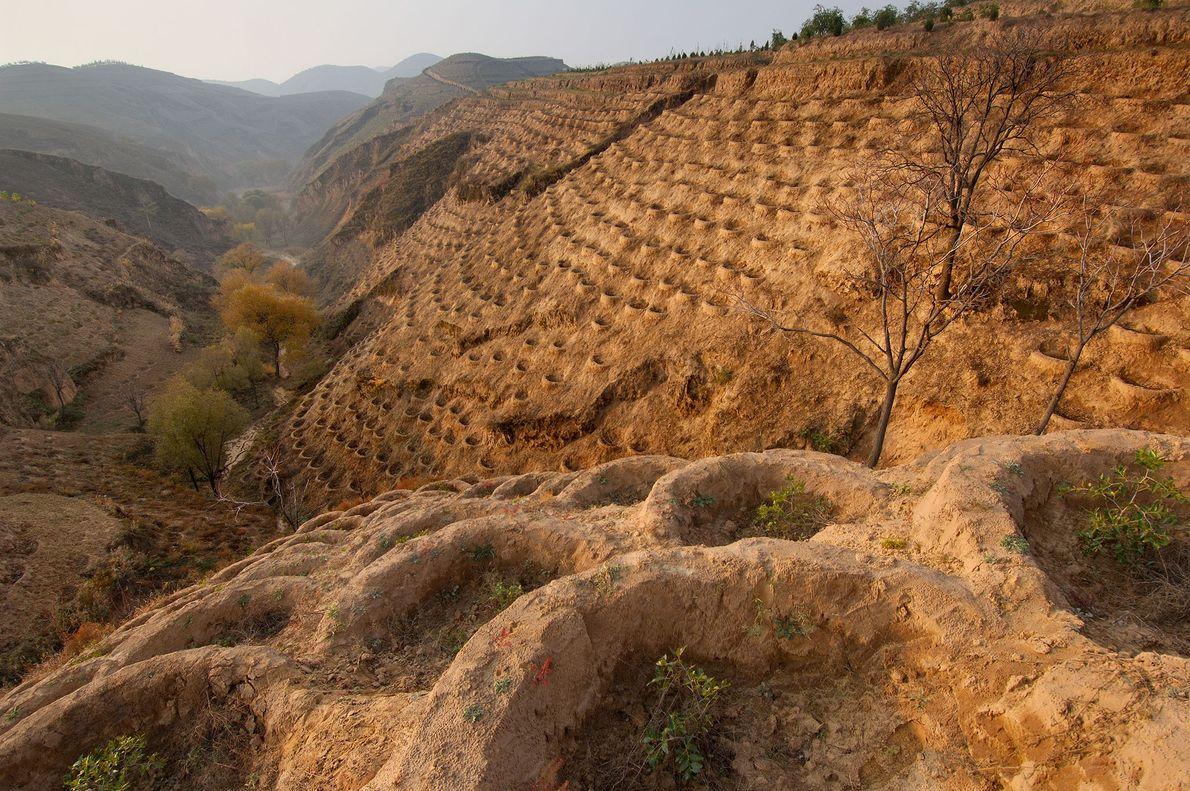 Las laderas de Fo Tang Yan