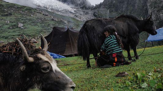 Bután, el país sin emisiones de carbono