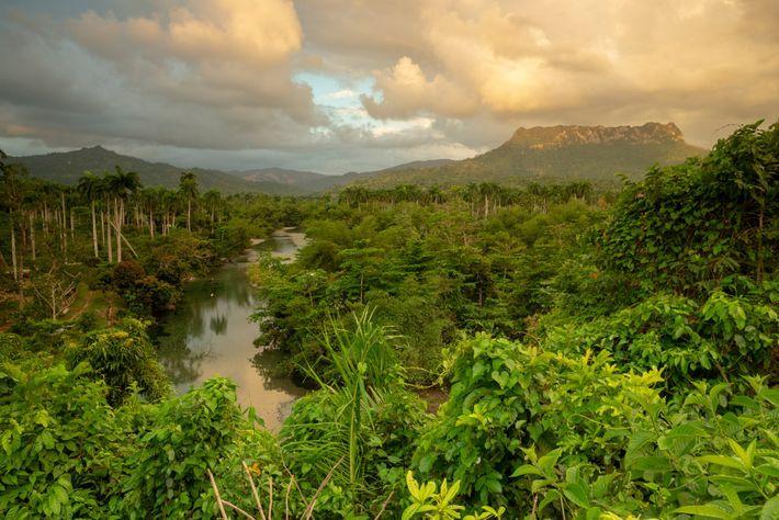 El sol sale sobre El Yunque