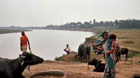 El río más sagrado de la India está secándose